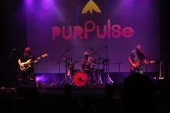 purpulse-2020-14