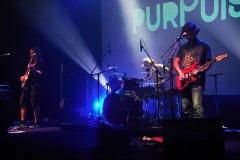 purpulse-2020-2