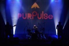 purpulse-2020-8